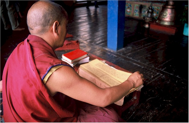 monk_reading