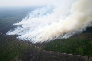 Indonesia says Singapore acting like a child over haze